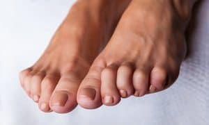 Hammertoe Center twp